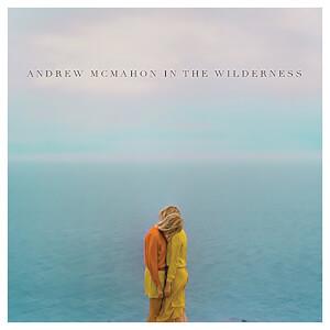 Andrew Mcmahon In The Wilderness Vinyl