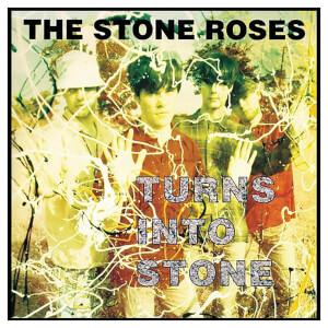 Turns Into Stone Vinyl