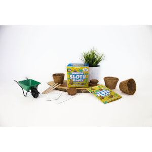 Sow & Grow Sensitive Sloth Plants from I Want One Of Those