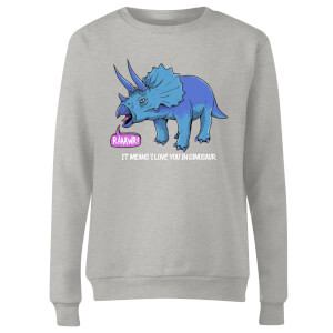 RAWR! It Means I Love You Women's Sweatshirt - Grey
