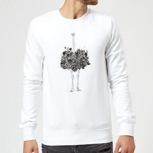 Balazs Solti Ostrich Sweatshirt - White