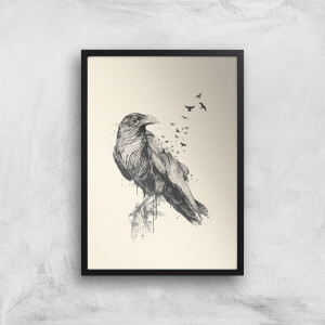 Balazs Solti Birds Flying Art Print