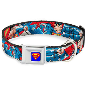 Buckle-Down DC Comics Superman Action Dog Collar - Blue/Stars and Stripes (Various Sizes)