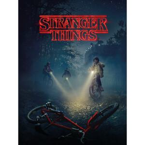 Stranger Things (Bike) 60 x 80cm Canvas Print