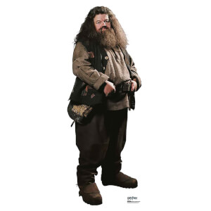 Harry Potter - Hagrid Mini Cardboard Cut Out