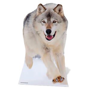Wolf Lifesize Cardboard Cut Out