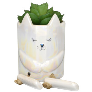 Candlelight Ceramic Cat Pot with Legs and Succulent