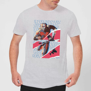 Marvel Avengers Ant-Man And Wasp Collage t-shirt - Grijs