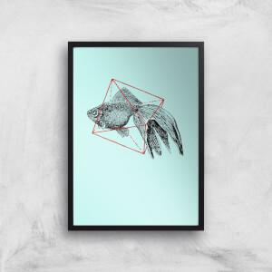 Fish In Geometry Art Print