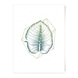 Geometry And Nature Art Print