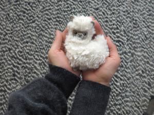 Pocket Pal Hitzbare Lama