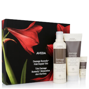 Aveda Damage Remedy Gift Set 475ml