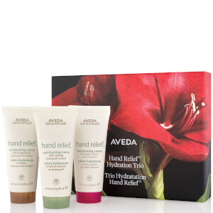 Aveda Renew Journey Gift Set 90ml