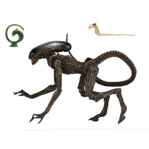"NECA Alien 3 - 7"" Scale Action Figure - Ultimate Dog Alien"