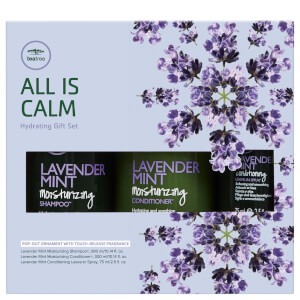 Paul Mitchell Tea Tree Lavender Mint Gift Set (Worth £43.45)