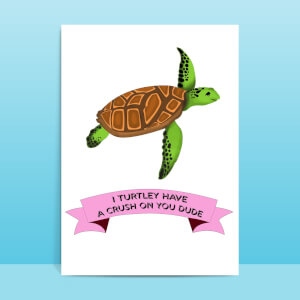 I Turtley Have A Crush On You Dude Greetings Card