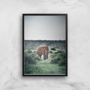 Wandering Elephant Giclee Art Print