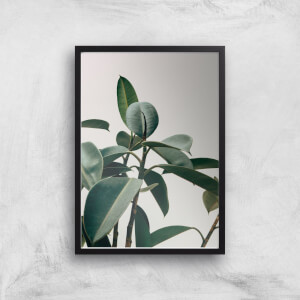 Thick Leaves Giclee Art Print