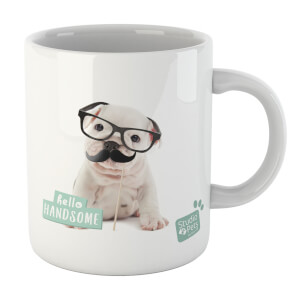 Studio Pets Hello Handsome Mug