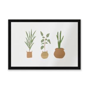 Plants Entrance Mat