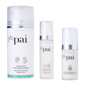 Pai Skincare Hydrating Day Set