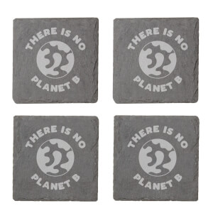 There's No Planet B Engraved Slate Coaster Set