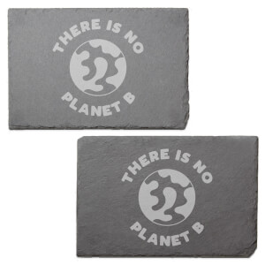 There's No Planet B Engraved Slate Placemat - Set of 2