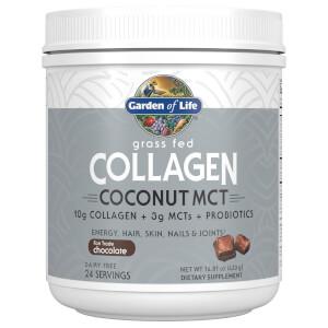 コラーゲンココナッツ MCT - チョコレート味 - 420g