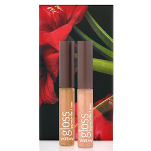 Aveda Feed my Lips Lip Shimmer Topper Duo