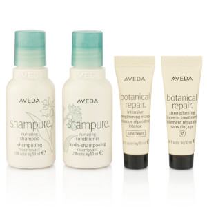 Aveda Nourish and Style Shampure Hair Care Set