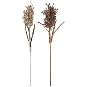 Bloomingville Faux Dried Flower - Set of 2 - Assiba