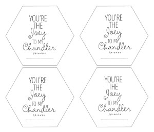 Friends You're The Joey To My Chandler Hexagonal Coaster Set