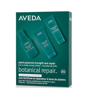 Aveda Botanical Repair Strengthening Trio