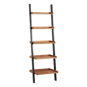 Phoenix Ladder Shelves