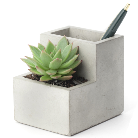 Concrete Desktop Planter and Pen Holder - Small