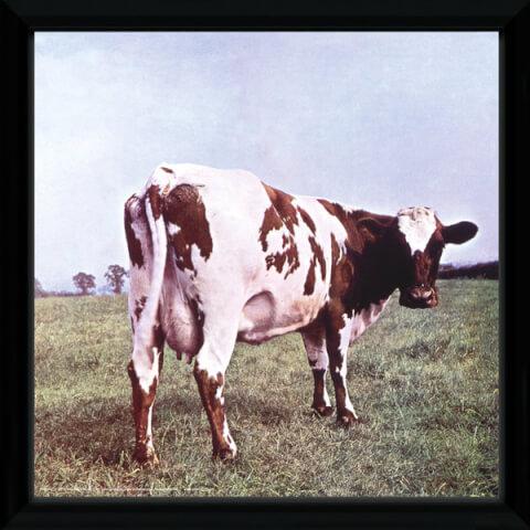 Pink Floyd Atom Heart Framed Album Cover - 12