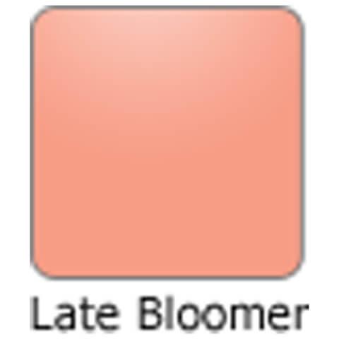 Bodyography Lipstick Late Bloomer 3.6gm
