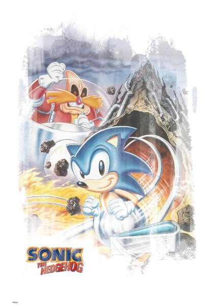 Affiche Sonic le Hérisson 'Pinball' - Fine Art