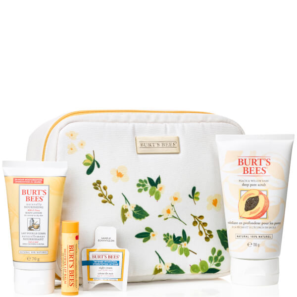 Burt's Bees Burt's Bag of Treats Gift Set