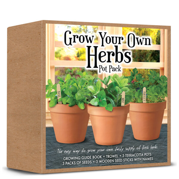 Grow Your Own Herbs Set