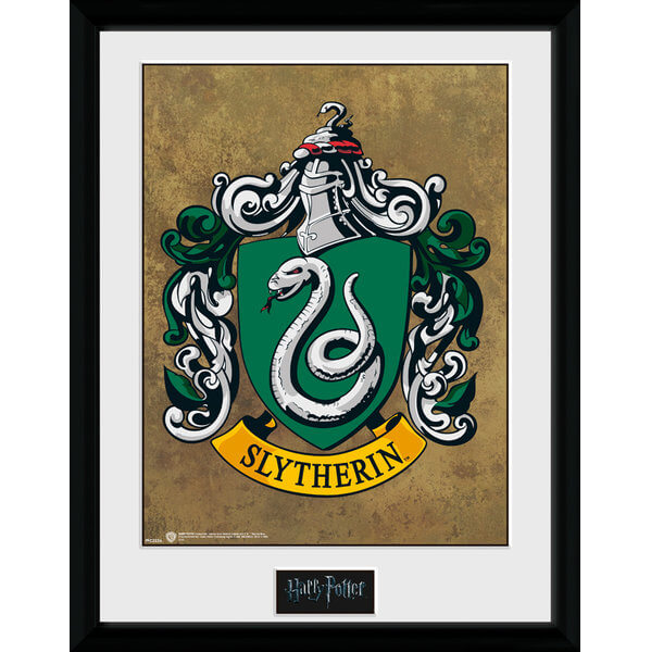 Harry Potter Slytherin Framed Photographic - 16