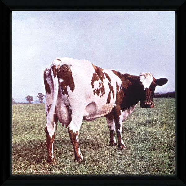 Pink Floyd Atom Heart Framed Album Cover - 12