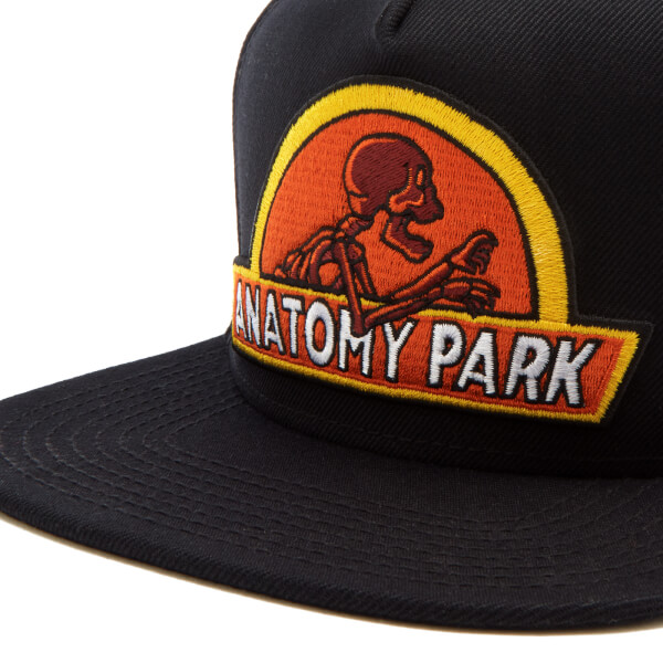 Rick And Morty Mens Anatomy Park Snapback Cap Black Merchandise