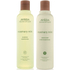 Aveda Rosemary Mint Duo- Shampoo & Conditioner: Image 1
