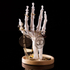 Skeleton Hand Jewellery Holder: Image 3