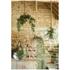 Parlane Hanging Glass Terrarium: Image 2