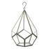 Parlane Hanging Glass Terrarium: Image 1