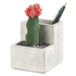 Concrete Desktop Planter and Pen Holder - Small: Image 2