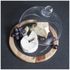 Natural Life Acacia Cheese Board (25cm): Image 2