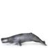 Papo Marine Life: Sperm Whale: Image 1